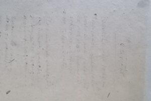 DSCN9448